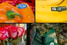 Fair Trade Foods / by Fair Trade