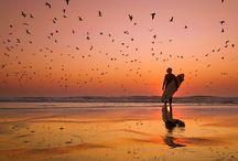 BEACH THEME / by Kathy Hostetler
