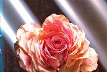 Flowers, flowers.... / by Galina Kofod