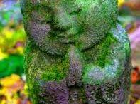 Zen and Life / by Jane Garrity