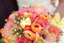 ( WEDDING : ALL THINGS : BOUQUET'S : CENTRE  :  ) / array of bouquets, beautiful   / by Gillian Haberfield