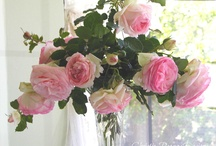 "Rose Bouquets from my Yard / by Christie Repasy Designs~ ""Chateau de Fleurs"""