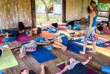 Yoga Teacher Training / Zuna Yoga offers 200 hour, 300 hour and 500 hour yoga teacher trainings worldwide. Choose your adventure in Thailand, Bali, Lombok or Cambodia. / by Zuna Yoga