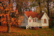 COZY HOMES / by Lynne Thompson