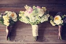 Wedding plans / by Brianne Bond