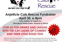 Fun Events / by Anjellicle Cats