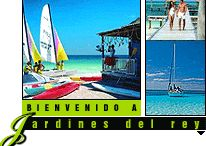 Jardines del Rey Cuba / All about Jardines del Rey Cuba – Links to important websites focused and dedicated on Jardines del Rey, Things to do in Jardines del Rey, Best Hotels in Jardines del Rey and Private restaurants in Jardines del Rey Cuba / by Cuba Travel