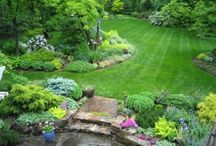 Garden Ideas and Design / by Lazonga Jones