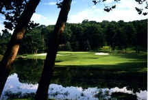 Golf at Lodge of Four Seasons / 54 holes of our great golf at the Lodge of Four Seasons / by Lodgeoffourseasons Lakeozark