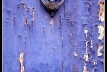 Lavender / by Laura Ottomann