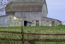 Barns / by Annette Grant