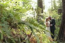 Nestldown Wedding Films / Tucked in the redwoods of the Santa Cruz Mountains this stunning retreat is one of our favorite venues to film.  On acres of gorgeously landscaped property, this stunning property has a rustic charm, and unique elegance that's hard to beat.  Check out some of our films and see for yourself.   / by Ric & Rose