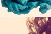Beauty Up Close / by RaveNectar