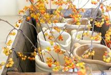 Autumn - Thanksgiving / by Linda Landig Jewelry