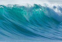 Water & Waves / by Martha Hamnache