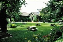 Sonoma Wine Tasting Itineraries / by Sonoma.com
