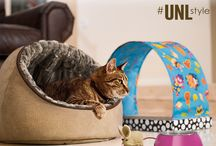 Unleashed by Petco Wish List / http://unleashedby.petco.com/winterwishlist.aspx  RULES: http://contests.piqora.com/contests/contest/content/petco.com/454/rules #UNLstyle Fall 2013 Collection / by Kasey Williams