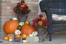 Fall♥ / by Brandi Allison