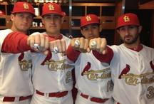 World Champion St. Louis Cardinals / by Leesa Hagen