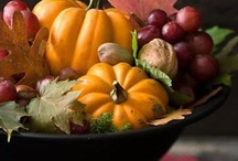 Holiday:  Thanksgiving/Autumn Harvest / Mostly cakes, cupcakes, cookies, table settings, door and holiday decor. / by Irene Tice
