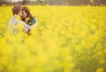 The Wedding of My Dreams. / by Alicia Conlon