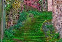 Gardens / Beautiful gardens. / by Cote Designs