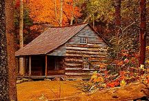 ❤ Left my heart in TN / by Dabney Stewart