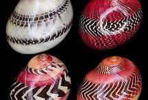She sells sea shells / by Terri Windley