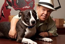 PITT BOSS!! / The reality show Pitt Boss. They rescue Pitt bulls and shorti speaks in public about what a great dog it is!! The only bad ones are raised by bad people!! / by Debbie Campbell