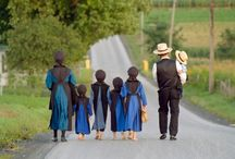 sometimes I wish I were AMISH / My heritage is HERE, in Lancaster, PA.  My family came to the USA in the 1600's after William Penn was in Germany promising religious freedom. They were Mennonite escaping religious persecution. Pretty close to Amish. / by Kerry Hawes-Castellani