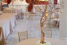 Wedding stuff / by Catherine Scannell Rowe