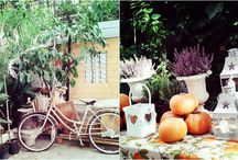 Charming shops / by Little Muna