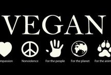 Why Vegan? / Here are many of the reasons why a plant-based diet is beneficial for you, the animals, and the environment. / by Cornell Vegan Society