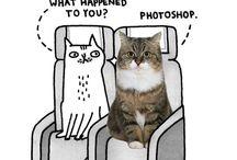Funny!!! / by Con Pappalardo