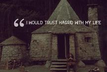 Harry Potter / by Meleofa Baker