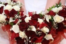 Red and White Wedding Flowers / A combination of red and white floral designs for weddings. If you are adding navy as a color for a patriotic themed wedding then these selections are perfect as well. / by Bergerons Flowers