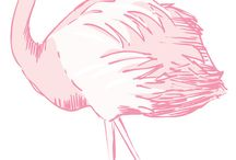 pink flamingo / by Ruth Topless