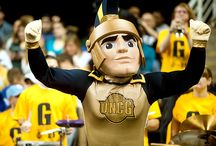 Spartan Athletics  / Our Greensboro. Our Game.  / by UNCG