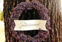 Mykl's Wedding | 02.07.15 / by Kaleb Norman James Design