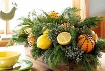 Natural Christmas decor / by Cote Designs