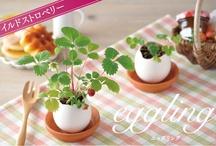 Gardenkins // Watch Me Grow / by Babiekins Magazine