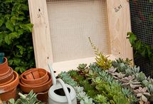gardening / by Maureen Fasoli