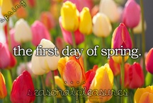 Spring / by Jenna Kirby