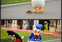 Disney World / by Amanda Sager