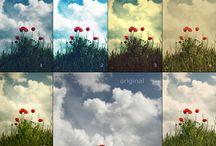Photoshop / by Darcee Ralphs