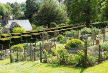 Gardens / by Burle Pickett
