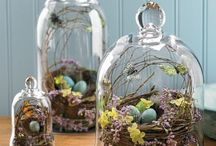 Crazy For Cloches  / by Julie Faircloth