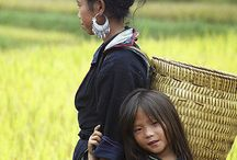 my people, The Hmong / by Tina Ohmyang