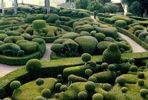 """Green Out - """"Party"""" of Gardens / gardens, garden design, ideas / by Kira Santa"""