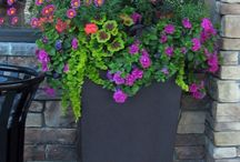 Flower container / by Marilyn Kauzlick